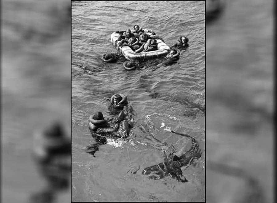 USS Indianapolis rescue, sharks surrounding sailors