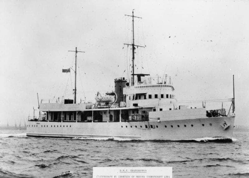 HMS Grasshopper (T85)