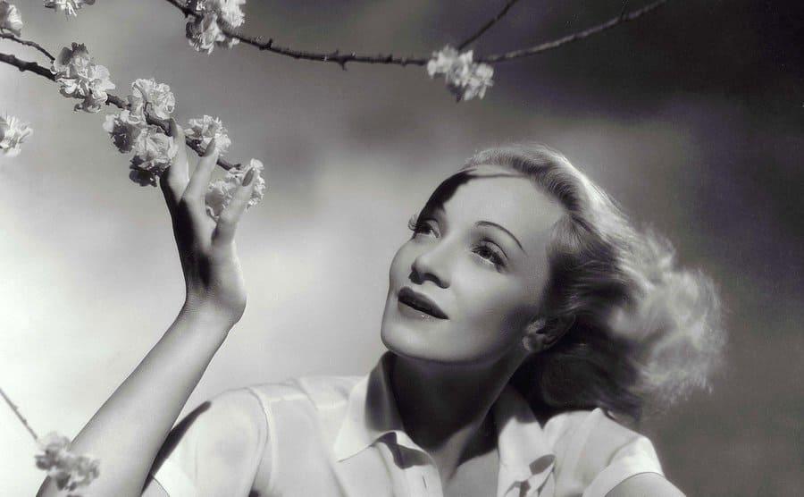 Marlene Dietrich circa 1948.