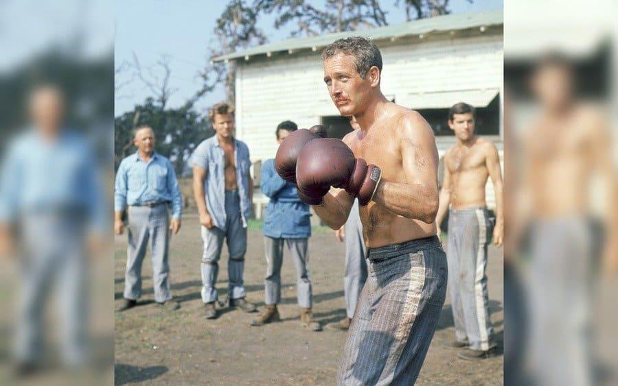 Cool Hand Luke – 1967, Paul Newman