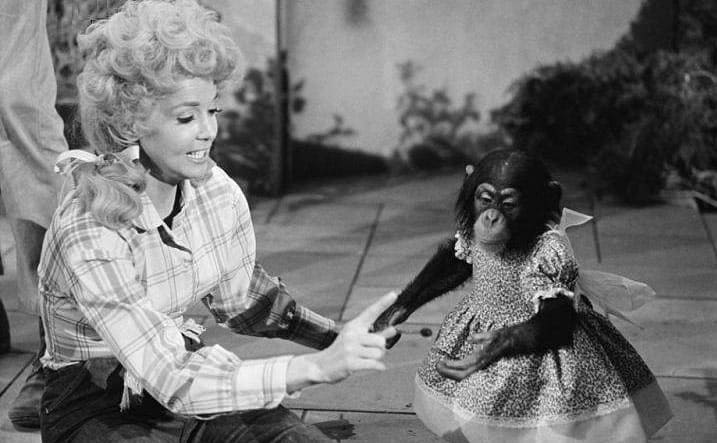 Donna Douglas with a monkey in The Beverly Hillbillies