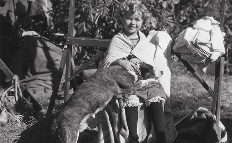 Shirley Temple at a young age with a dog lying on her lap