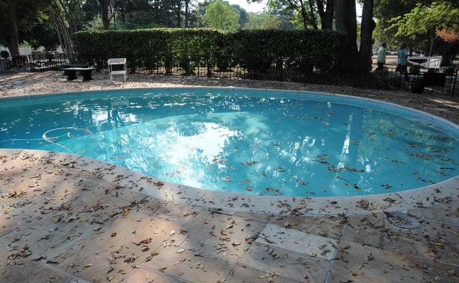 The swimming pool with fallen leaves inside and out