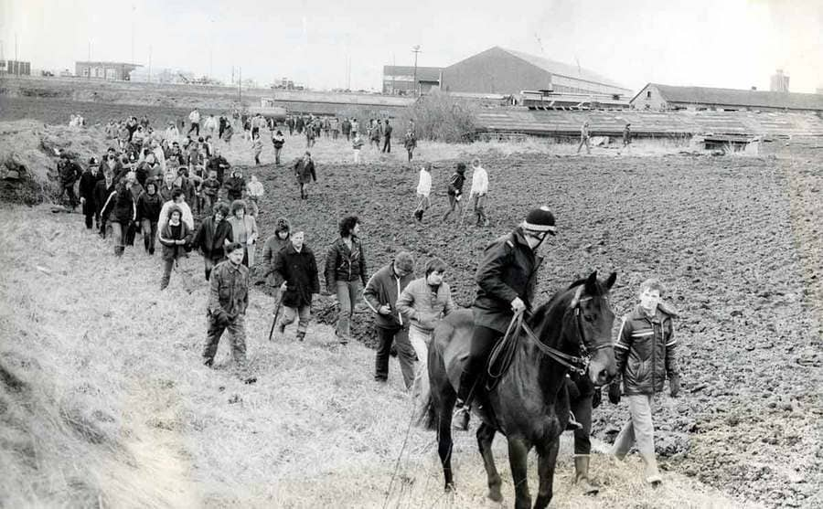 Men and cops on horses searching a field