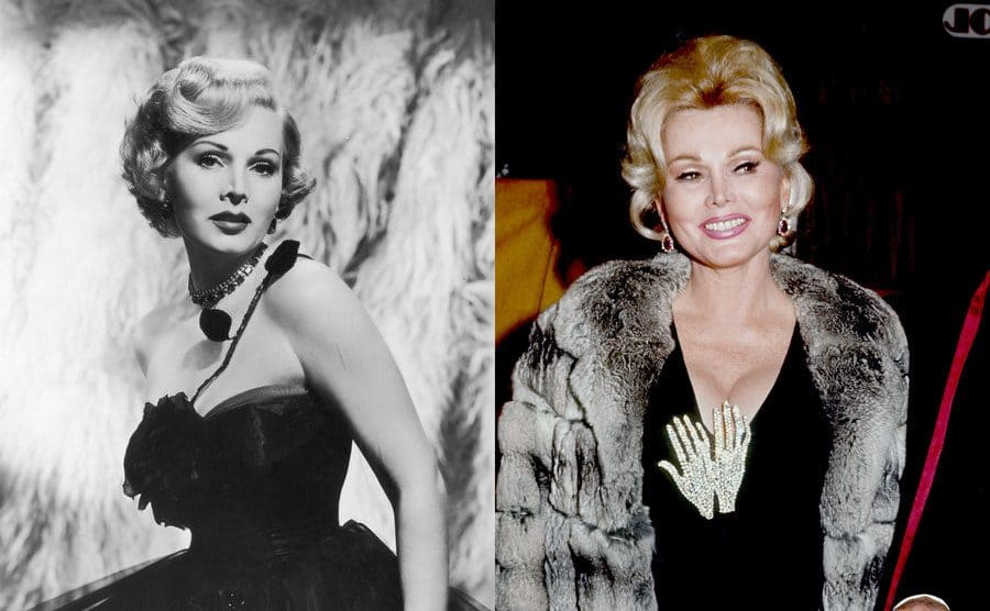 Zsa Zsa Gabor posing in a black and white portrait photograph in 1952 / Zsa Zsa Gabor on the red carpet in 1970 in a black dress, a diamond encrusted broach in the shape of hands, and a grey fur shawl