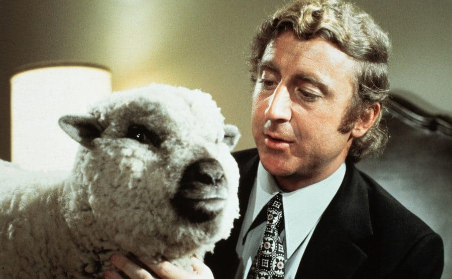 Gene Wilder with the sheep sitting in a bed