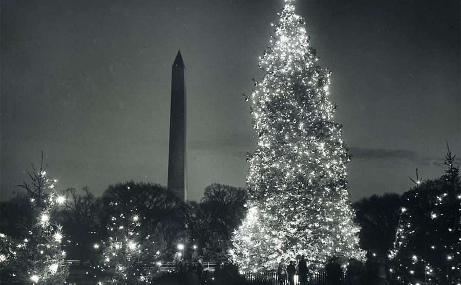 A Christmas tree displayed publicly next to the Washington Monument in 1956