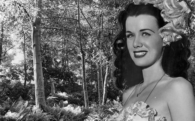 A photograph of Jean Spangler on a woodsy background