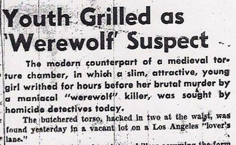 A Newspaper clipping that discusses a youth interrogated as a suspect in 'Werewolf' killing.