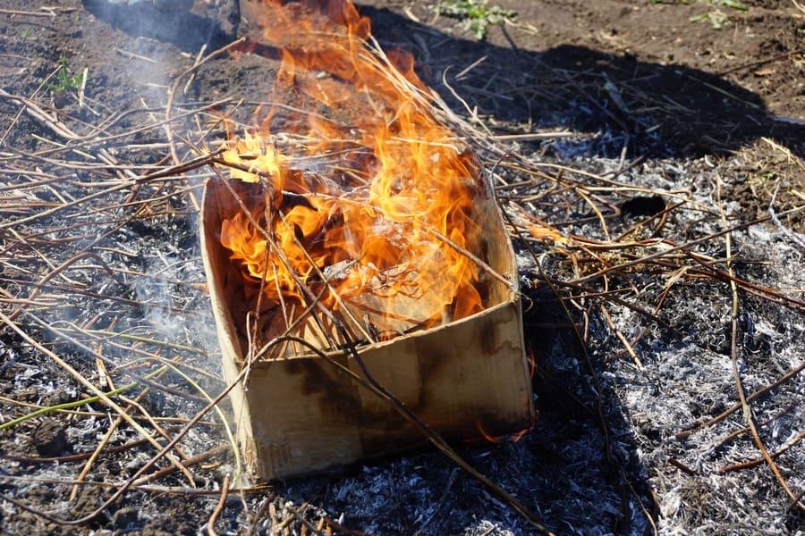 A burning cardboard box on the ground.