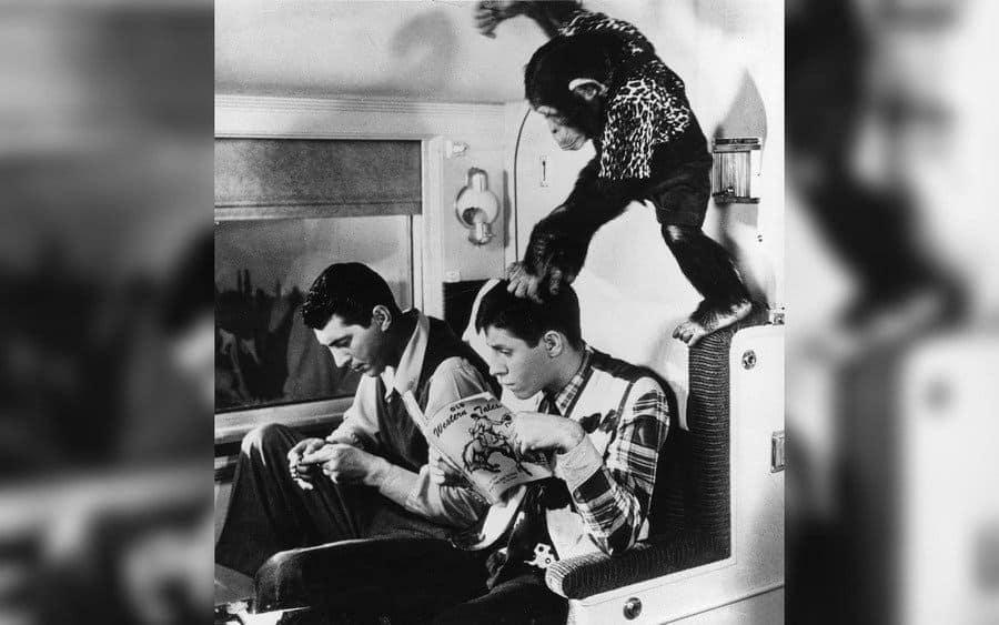 My Friend Irma – 1949, Dean Martin, Jerry Lewis