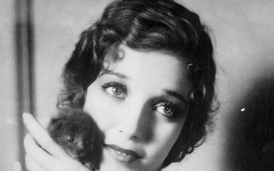 The famous film star Loretta Young poses for the photographer with a kitten