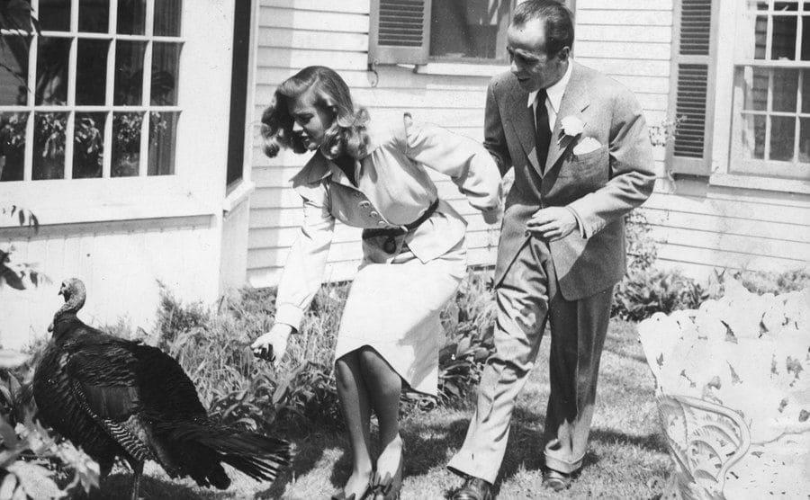 Lauren Bacall and Humphrey Bogart are chasing a turkey in Malabar.