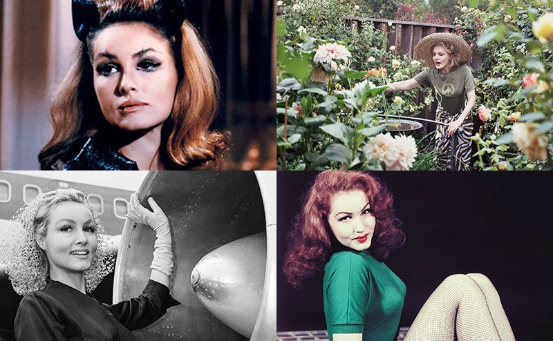 A collage of Julie Newmar in various poses and photoshoots.