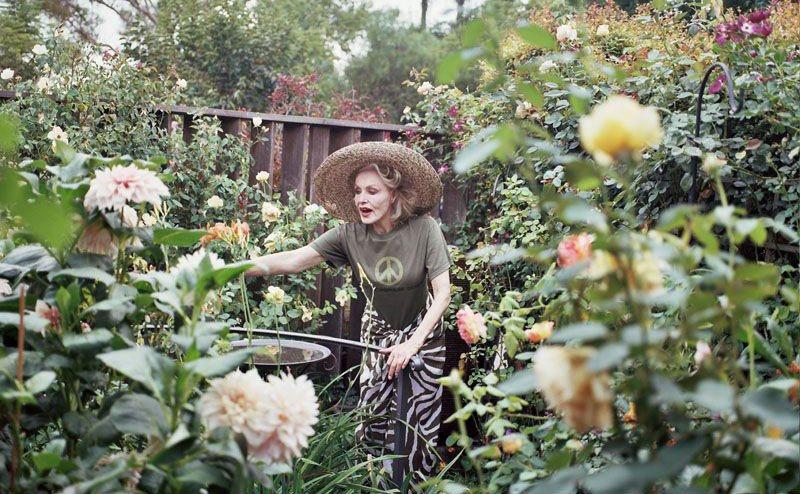 Julie Newmar is watering her plants.