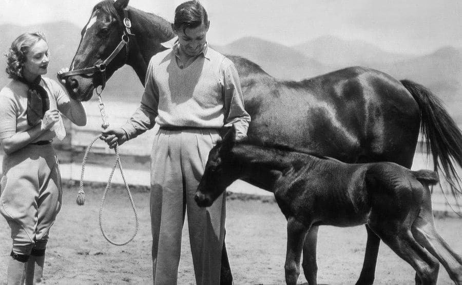 Gable and Lombard on their horse ranch.